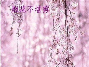 【文苑★诗歌】二月走远